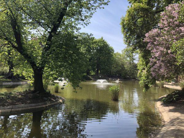Park Wilsona – jeden z najpiękniejszych parków Poznania