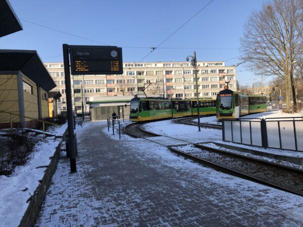 Dzielnice Poznania – Ogrody